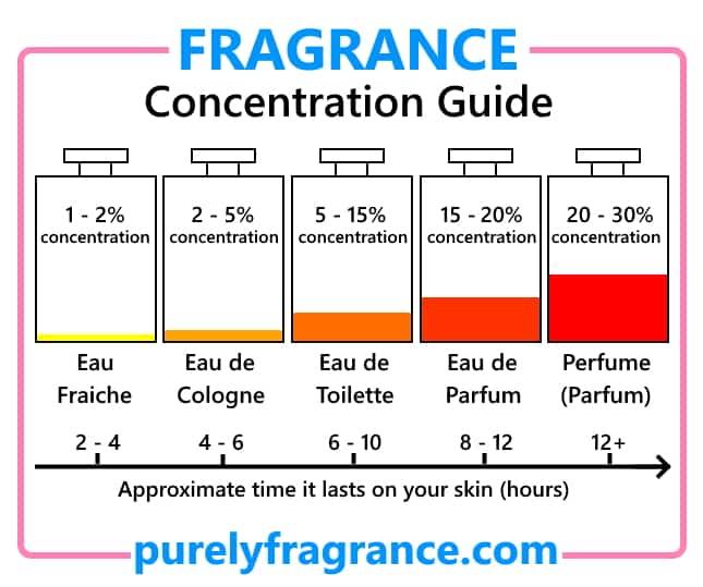 Should I Buy Eau de Parfum or Eau de Toilette? Fragrance concentration guide